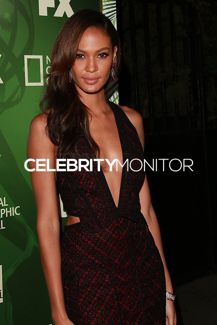 LOS ANGELES, CA, USA - AUGUST 25: Joan Smalls at the FOX, 20th Century FOX Television, FX Networks And National Geographic Channel's 2014 Emmy Award Nominee Celebration held at Vibiana on August 25, 2014 in Los Angeles, California, United States. (Photo by David Acosta/Celebrity Monitor)