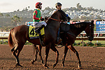 """DEL MAR, CA  AUGUST 18: #4 Roman Rosso, ridden by Flavien Prat, in the post parade of the $1 Million TVG Pacific Classic (Grade l) """"Win and You're in Classic Division"""" on August 18, 2018 at Del Mar Thoroughbred Club in Del Mar, CA. (Photo by Casey Phillips/Eclipse Sportswire/Getty Images"""