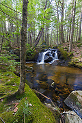 Cascade on Crooked Brook in North Woodstock, New Hampshire on a spring day.