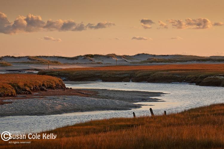 Mill Creek marsh, Sandwich, Cape Cod, MA, USA