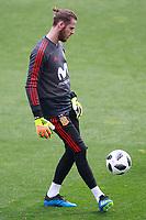 Spain's David De Gea during training session. May 29,2018.(ALTERPHOTOS/Acero) /NortePhoto.com