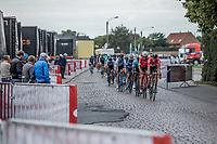 peloton riding the cobbles.<br /> <br /> 103th Kampioenschap van Vlaanderen 2018 (UCI 1.1)<br /> Koolskamp – Koolskamp (186km)