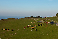 Europe/Espagne/Pays Basque/Guipuscoa/env de Fontarrabie: Paysages de la Route du Jaizkibel