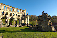 Rievaulx Abbey main church, side view.North Yorkshire, England
