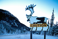 Alaska Highway, Northern Rockies, BC, British Columbia, Canada - Warning Caution Road Sign for Woodland Caribou (Rangifer tarandus) Animal Crossing, Winter