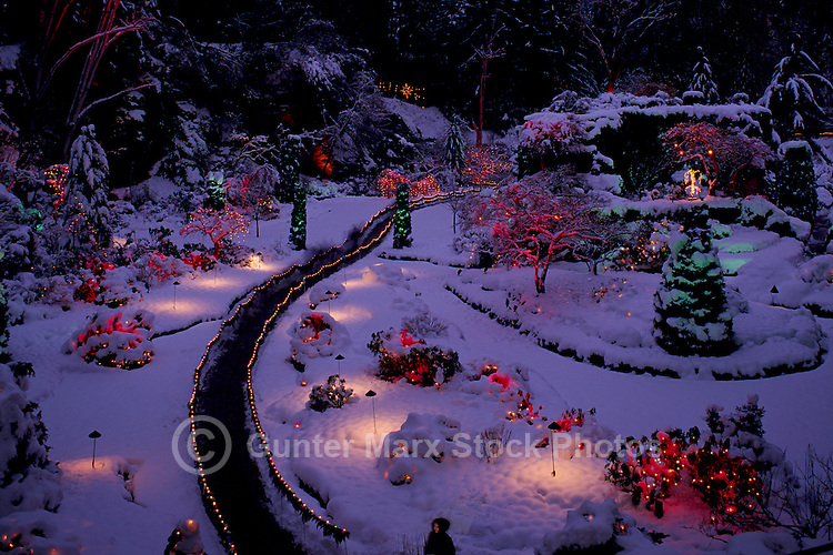 """Butchart Gardens, Brentwood Bay near Victoria, Vancouver Island, BC, British Columbia, Canada - Christmas Lights and Decorations in the """"Sunken Garden"""""""