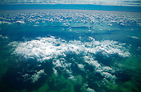 Cumulus cloud over shallow water