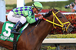 Wildcat Red (FL) with jockey Javier Castellano on board wins the Hutcheson Stakes G3  for 3 year olds at Gulfstream Park. Hallandale Beach, Florida  02-01-2014