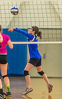 18 October 2015: Yeshiva University Maccabee Outside Hitter, Setter and team co-Captain Shana Wolfstein, a Senior from Burlington, VT, in action against the Sage College Gators, at the Peter Sharp Center, College of Mount Saint Vincent, in Riverdale, NY. The Gators defeated the Maccabees 3-0 in the NCAA Division III Women's Volleyball Skyline matchup. Mandatory Credit: Ed Wolfstein Photo *** RAW (NEF) Image File Available ***