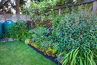 small space backyard garden mixed border with edible plants and cistern