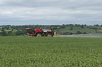 10-6-2021 Spraying winter beans growing in Rutland<br /> ©Tim Scrivener Photographer 07850 303986<br />      ....Covering Agriculture In The UK....