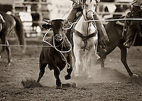 Corral Club Ring of Fire Ranch Rodeo