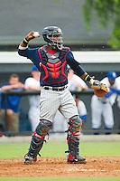 Elizabethton Twins catcher Brian Navarreto (24) on defense against the Burlington Royals at Burlington Athletic Park on June 25, 2014 in Burlington, North Carolina.  The Twins defeated the Royals 8-0. (Brian Westerholt/Four Seam Images)