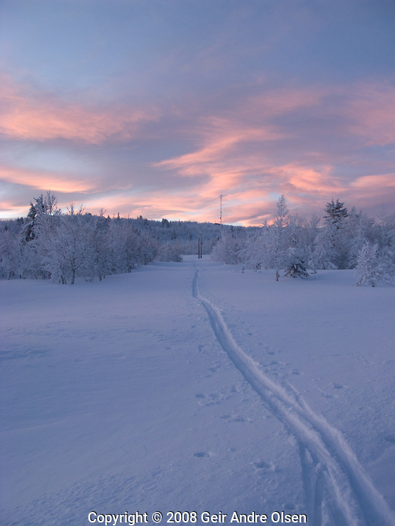 Ski-trails in powder snow with mobile antenna in the background in the mountains near Ringebu, Norway
