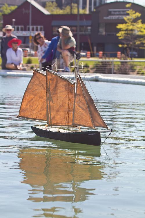 Seattle, Lake Union Park, spring, model sail boats, public park on the shore of Lake Union,