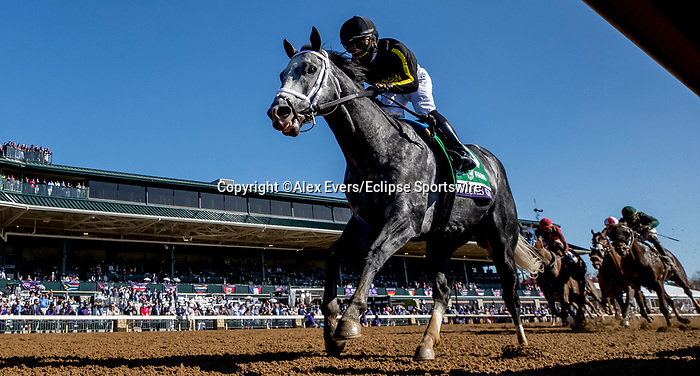 November 7, 2020 : Knicks Go, ridden by Joel Rosario, wins the Big Ass Fans Dirt Mile on Breeders' Cup Championship Saturday at Keeneland Race Course in Lexington, Kentucky on November 7, 2020. Alex Evers/Eclipse Sportswire/Breeders Cup/CSM