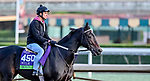 October 28, 2019 : Breeders' Cup Mile entrant Bolo, trained by Carla Gaines, exercises in preparation for the Breeders' Cup World Championships at Santa Anita Park in Arcadia, California on October 28, 2019. Scott Serio/Eclipse Sportswire/Breeders' Cup/CSM