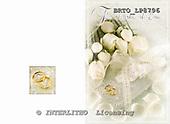 Alfredo, WEDDING, photos, BRTOLP8796,#w# Hochzeit, boda