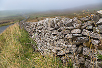 UK, England, Yorkshire Dales.  Stone Fences Delineate Field Boundaries.