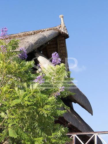 Flic en Flac, Mauritius. The Sofitel tourist resort. Traditional thatch roof.