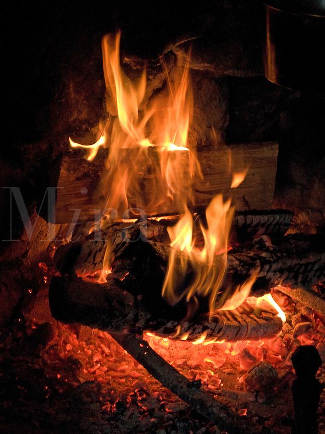 Wood in open fireplace