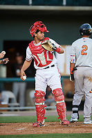 Harrisburg Senators catcher Raudy Read (26) during a game against the Bowie Baysox on May 16, 2017 at FNB Field in Harrisburg, Pennsylvania.  Bowie defeated Harrisburg 6-4.  (Mike Janes/Four Seam Images)