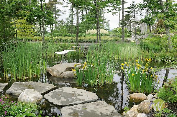 Coastal Maine Botanical Gardens. Kenetic sculpture by George Sherwood. Slater Forest Pond.