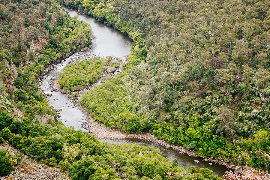 Image Ref: CA1218<br /> Location: Mitchell River National Park, Victoria<br /> Date of Shot: 04.12.20