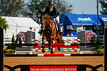October 17, 2021: Shannon Lilley (USA), aboard Ideal HX, competes during the Stadium Jumping Final at the 3* level during the Maryland Five-Star at the Fair Hill Special Event Zone in Fair Hill, Maryland on October 17, 2021. Jon Durr/Eclipse Sportswire/CSM