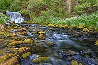 France, Doubs (25), Mouthe, la source du Doubs de type résurgence est à quelques mètres avant cette chute d'eau // France, Doubs, Mouthe, the source of the Doubs is a few meters before the waterfall