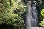 McClean Falls, Catlins, New Zealand