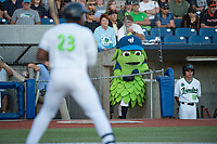 Hillsboro Hops mascot Barley during a Northwest League game against the Salem-Keizer Volcanoes at Ron Tonkin Field on September 1, 2018 in Hillsboro, Oregon. The Salem-Keizer Volcanoes defeated the Hillsboro Hops by a score of 3-1. (Zachary Lucy/Four Seam Images)