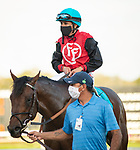 February 6, 2021: #9 CANDY MAN ROCKET and #8 NOVA RAGS make up the all Bill Mott exacta in the Grade III Sam F. Davis Stakes for Kentucky Derby Points at Tampa Bay Downs in Oldsmar, Florida on February 6, 2021. Dennis/Eclipse Sportswire/CSM