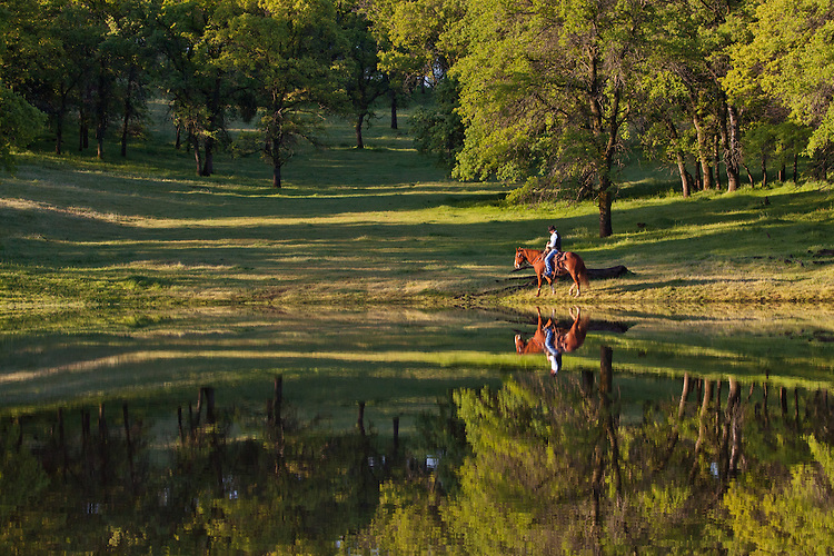 Single rider on horseback riding along a beautiful pond