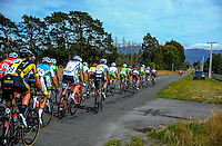 The peloton rides up Upper Plain Rd during stage five of the NZ Cycle Classic UCI Oceania Tour in Masterton, New Zealand on Tuesday, 26 January 2017. Photo: Dave Lintott / lintottphoto.co.nz