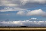 Kenya, Chyulu Hills National Park, Kilimanjaro, Mawenzi and Kibo cones