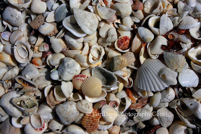 Shell Mix 3