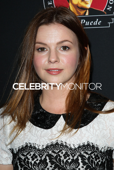 """HOLLYWOOD, LOS ANGELES, CA, USA - MARCH 20: Amber Tamblyn at the Los Angeles Premiere Of Pantelion Films And Participant Media's """"Cesar Chavez"""" held at TCL Chinese Theatre on March 20, 2014 in Hollywood, Los Angeles, California, United States. (Photo by Celebrity Monitor)"""