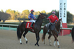 HOT SPRINGS, AR - FEBRUARY 15: American Dubai #1, with jockey Walter De La Cruz before the Southwest Stakes at Oaklawn Park on February 15, 2016 in Hot Springs, Arkansas. (Photo by Justin Manning/Eclipse Sportswire/Getty Images)