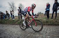 Nikolas Maes (BEL/Lotto Soudal) up the Oude Kwaremont <br /> <br /> 71st Kuurne-Brussel-Kuurne (2019)<br /> Kuurne > Kuurne 201km (BEL)<br /> <br /> ©kramon