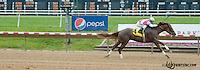 Captain Lewis winning at Delaware Park on 6/6/13