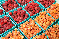 Raspberries at Lake Oswego Farmers Market. Oregon
