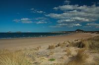 North Berwick Law, Bass Rock and Broad Sands near North Berwick, East Lothian