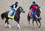 APRIL 30, 2015: Carpe Diem, trained by Todd Pletcher, exercises in preparation for the 141st Kentucky Oaks during morning workouts at Churchill Downs in Louisville, Kentucky. Ting Shen/ESW/Cal Sport Media