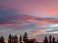 Clouds. Sunset
