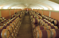 The oak barrel ageing cellar, Chateau Puech-Haut, Saint-Drezery, Coteaux du Languedoc, Languedoc-Roussillon, France