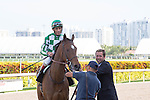 March 28, 2015: BEauty Parlor and John Velazquez after winning the G3 Orchid Stakes at Gulfstream Park, Hallandale Beach (FL). Arron Haggart/ESW/CSM