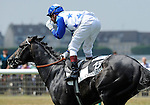 Reliable Man (no. 13), ridden by Gerald Mosse and trained by Alain de Royer Dupre, wins the 175th running of the group 1 Prix du Jockey Club for three year olds on June 05, 2011 at Chantilly Racecourse in Chantilly, France.  (Bob Mayberger/Eclipse Sportswire)