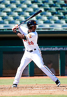 Mesa Solar Sox outfielder L.J. Hoes #29, of the Baltimore Orioles organization, during an Arizona Fall League game against the Peoria Javelinas at HoHoKam Park on October 15, 2012 in Mesa, Arizona.  Peoria defeated Mesa 9-2.  (Mike Janes/Four Seam Images)