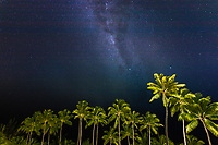 Milky Way and stars above lit-up, green palm trees on a clear summer night, on Bora Bora island, near Tahiti, French Polynesia, Pacific Ocean